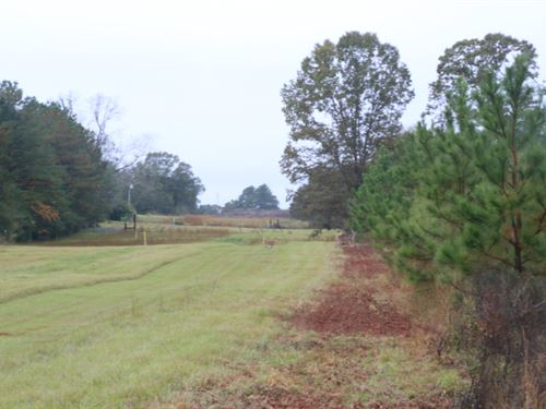 Timber Investment Hunting Co, Rd : Prattville : Autauga County : Alabama