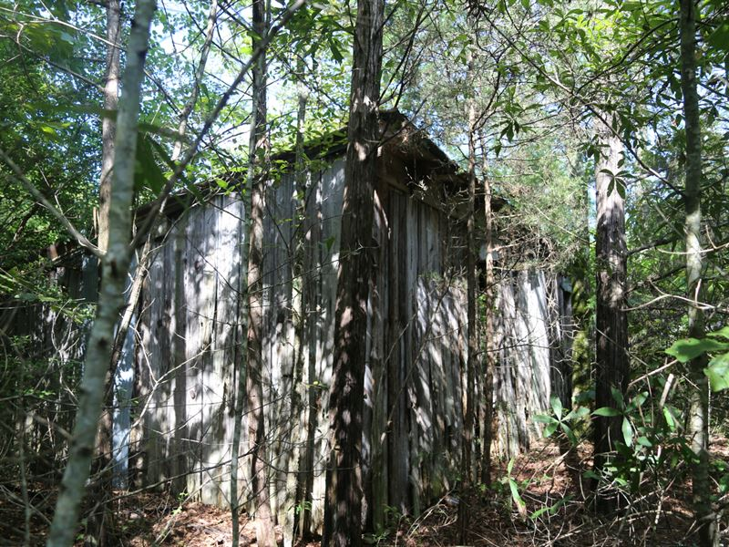 197 Ac, Deer, Ducks, And Cabin Site : Land for Sale ...