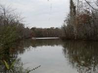 Alabama River Lot : Lowndesboro : Lowndes County : Alabama