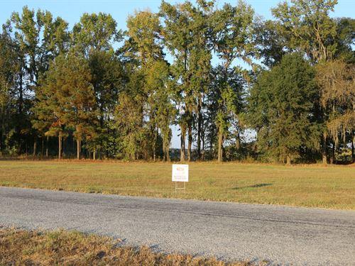 River Ridge Harbor Lot 25 : Montgomery : Alabama