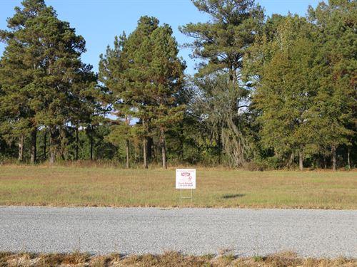 River Ridge Harbor Lot 30 : Montgomery : Alabama