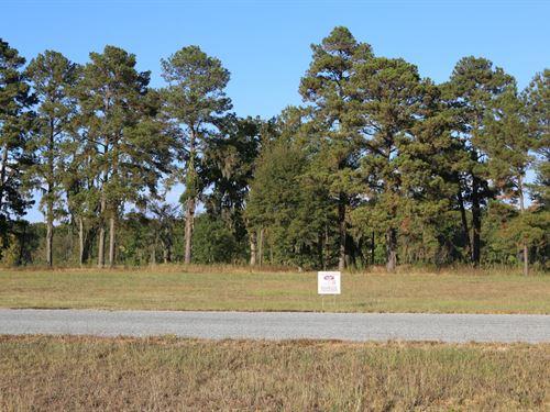 River Ridge Harbor Lot 31 : Montgomery : Alabama