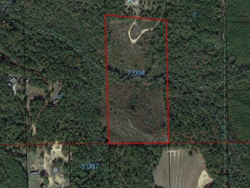 Maplesville 20 Acre Tract : Maplesville : Chilton County : Alabama