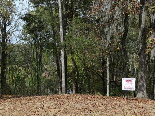 River Ridge Harbor Lot 13 : Montgomery : Alabama