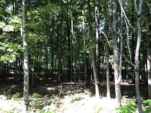 Southern Tier Camp Spot : Smyrna : Chenango County : New York