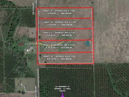 C Jim West Rd, Beauregard, 8 Ac : Deridder : Beauregard Parish : Louisiana