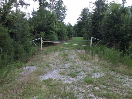 Old Gansville Road, Winn Parish, 8 : Winnfield : Winn Parish : Louisiana