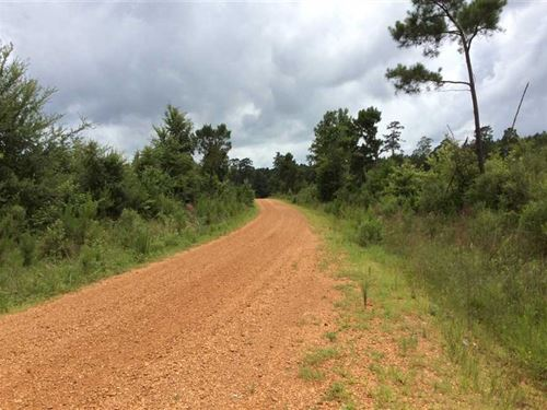 Peters Road Tract, Winn Parish, 50 : Winnfield : Winn Parish : Louisiana