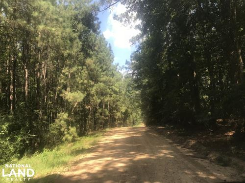 Smithdale Small Acreage With Highwa : Smithdale : Amite County : Mississippi