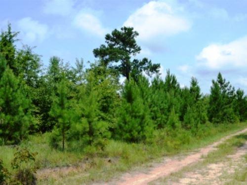 Kersey Hill : Kite : Johnson County : Georgia