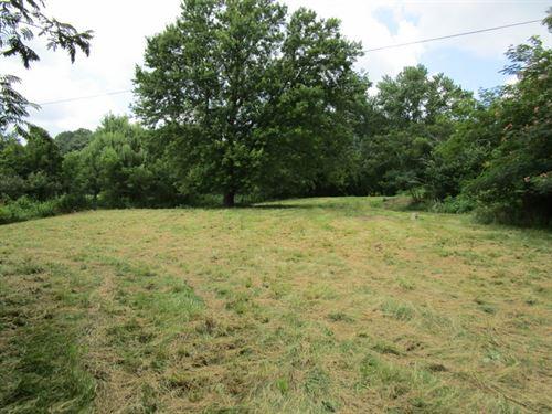 10 Acres In Metcalfe County, Ky : Edmonton : Metcalfe County : Kentucky