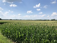 Prime Ohio Farm Auction : Eaton : Preble County : Ohio