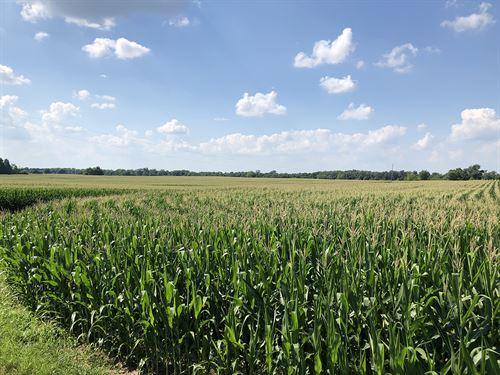 Prime Ohio Farm Auction : Eaton : Preble County : Ohio