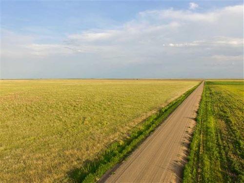 153 Acres of Crp And Good Hunti : Richfield : Morton County : Kansas