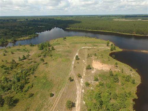 12.1 Acre Lake Front Estate Lot 5 : Baxley : Appling County : Georgia