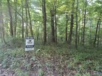 25 Acres On Upper Salt Creek In Be : Nineveh : Brown County : Indiana
