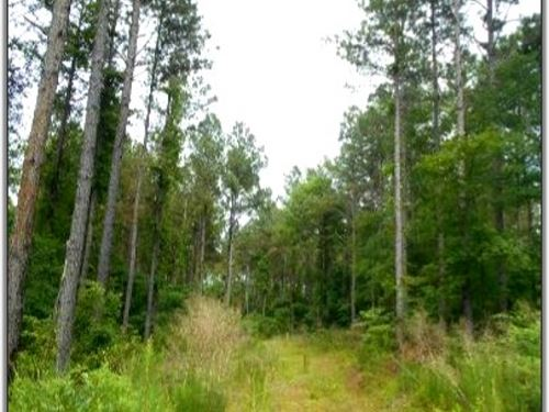 172.2 Acres In Grenada County, Ms : Coffeeville : Grenada County : Mississippi