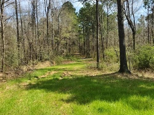 234 Acres Land Timberland For Sale : Roxie : Franklin County : Mississippi