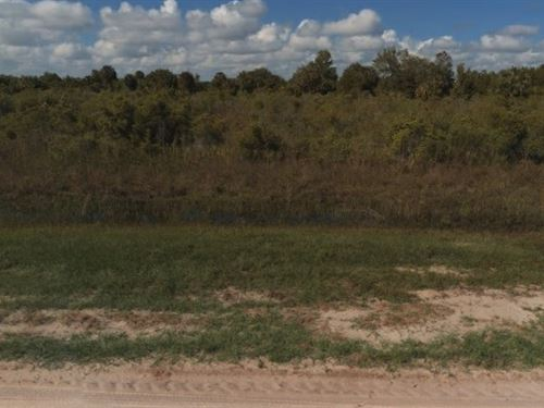 Okeechobee County, Fl $20,000 : Okeechobee : Florida