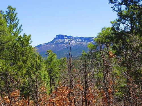 41.04 Acres In Trinidad, CO : Trinidad : Las Animas County : Colorado