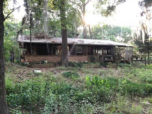 Big Cypress Bayou Hideaway, Price : Karnack : Harrison County : Texas