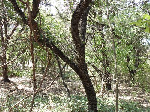 5468 Oak Drive, Belton : Belton : Bell County : Texas