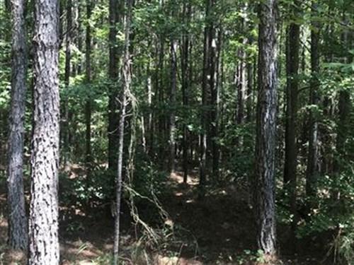 23 Acres +/- Fayette County, Al : Fayette : Alabama