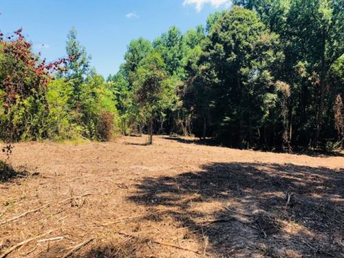 13.5 Acres Carto Road/ Tylertown, : Tylertown : Walthall County : Mississippi