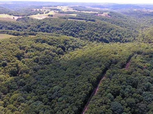 Development Property Next To New : Kirbyville : Taney County : Missouri