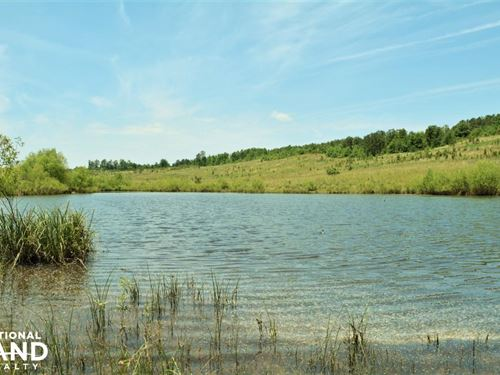 Cahaba River Wma Hunting & Recreati : Alabaster : Shelby County : Alabama