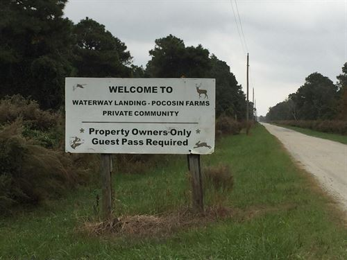 Hyde County Hunting Property : Belhaven : Beaufort County : North Carolina