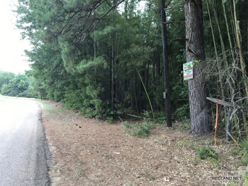 1 Ac - Wooded Tract For Home Site : Farmerville : Union Parish : Louisiana