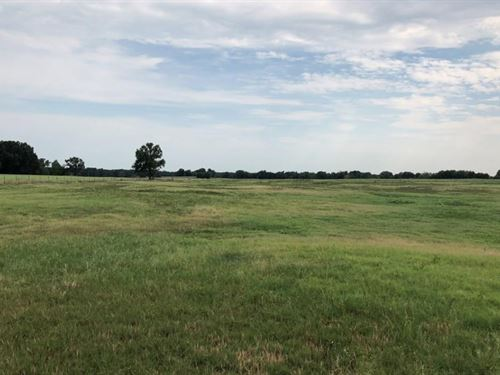 67 Acres With Pond In Como : Como : Wood County : Texas