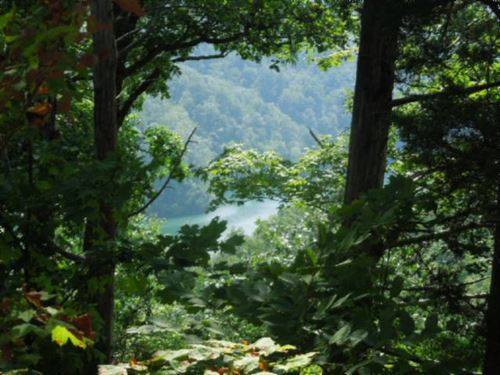 1.27Ac Dale Hollow Lake View, Gated : Allons : Overton County : Tennessee