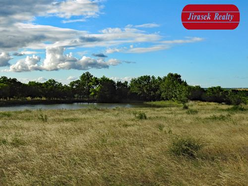 11.12 Acres, Cr 114, Buckholts Isd : Rogers : Milam County : Texas