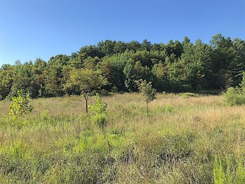 Campaign Poplar Rd - 96 Acres : Gallipolis : Gallia County : Ohio
