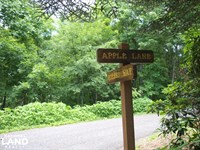 Apple Mountain Estate Lot North : Spruce Pine : Mitchell County : North Carolina