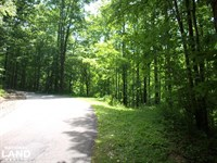Apple Mountain Estate Lot South : Spruce Pine : Mitchell County : North Carolina