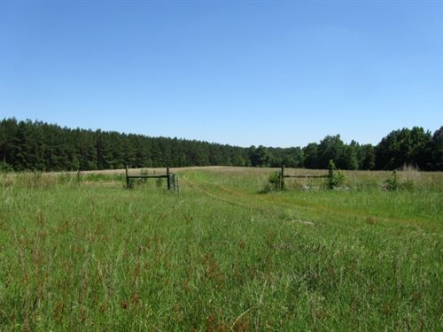 50 Acres In Montgomery County : Stewart : Montgomery County : Mississippi