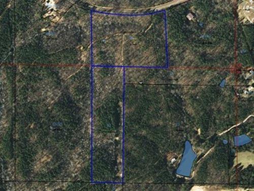 27 +/- Wooded Acres In Cleburne Co : Heflin : Cleburne County : Alabama