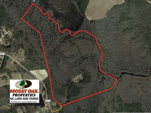 Reduced, 101 Acres of Hunting Lan : Autryville : Cumberland County : North Carolina