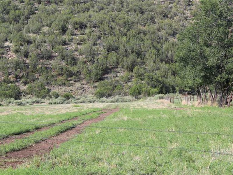 9.4 Acres With Water Rights at His : Lincoln : Lincoln County : New Mexico
