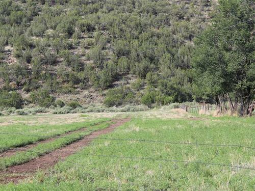 9.4 Acres With Water Rights at His : Lincoln : New Mexico