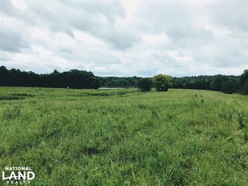 Darby Road Cattle Farm : Chester : South Carolina