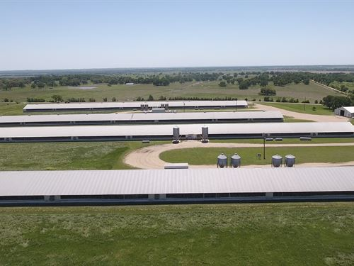 Poultry Farm With 60 Acres : Cameron : Milam County : Texas