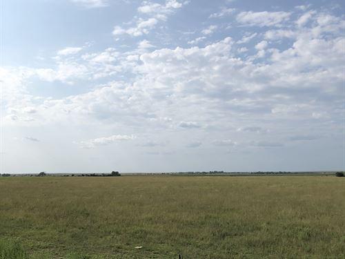 Ness County Quarter, Irrigation Po : Bazine : Ness County : Kansas