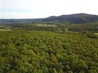 80 Acres of Recreational, Hunt : Timbo : Stone County : Arkansas