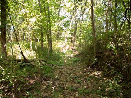 60 Acres Timber With Pond on TT Ea : Osceola : Saint Clair County : Missouri