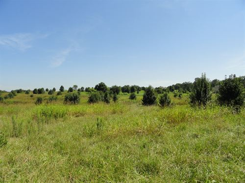 Pritchards Drive Residential Lot : Anderson : South Carolina
