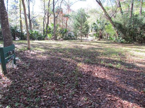 .3 Acre Lot 776165 : Chiefland : Levy County : Florida